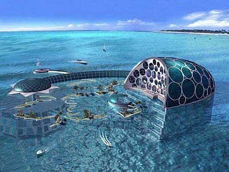 Incredible Habitats Under the Sea